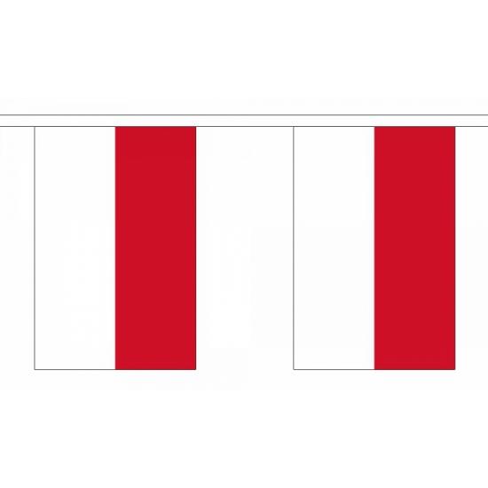Luxe Indonesie vlaggenlijn 9 m