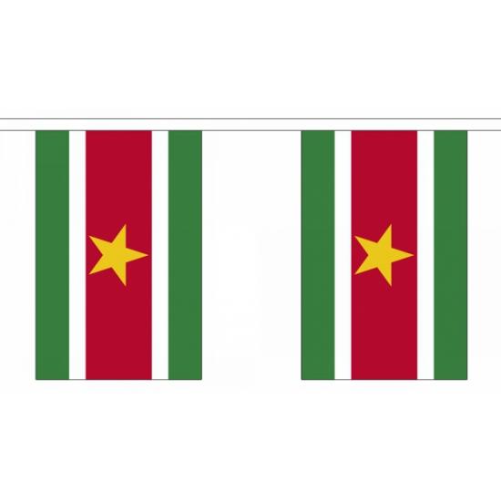 Luxe Suriname vlaggenlijn 9 m