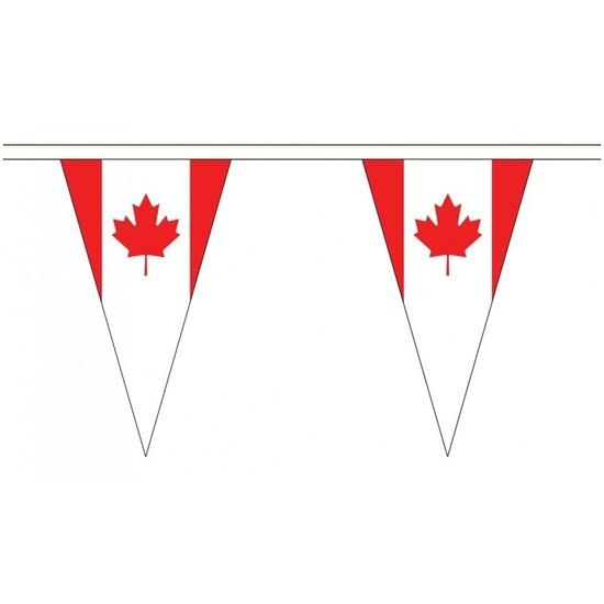 Canada landen punt vlaggetjes 5 meter