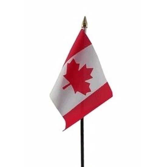 Canada mini vlaggetje op stok 10 x 15 cm