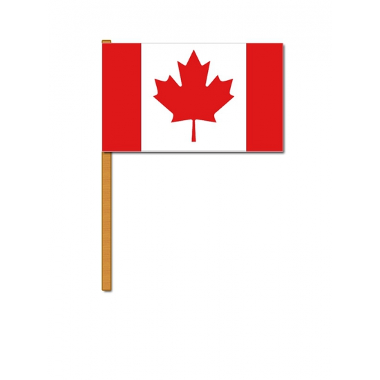Luxe zwaaivlag Canada