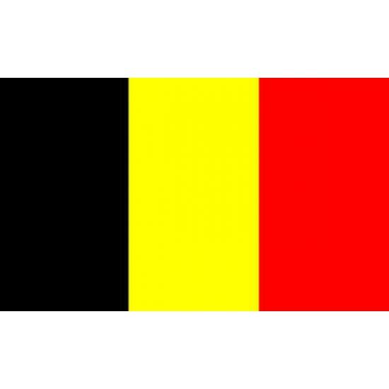 Mini vlag Belgie 60 x 90 cm
