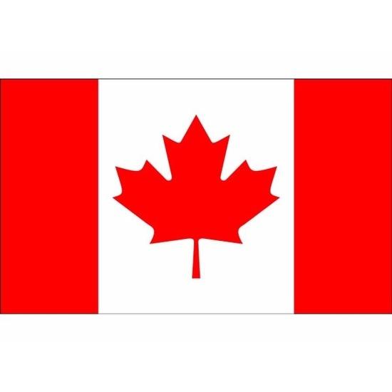 Mini vlag Canada 60 x 90 cm